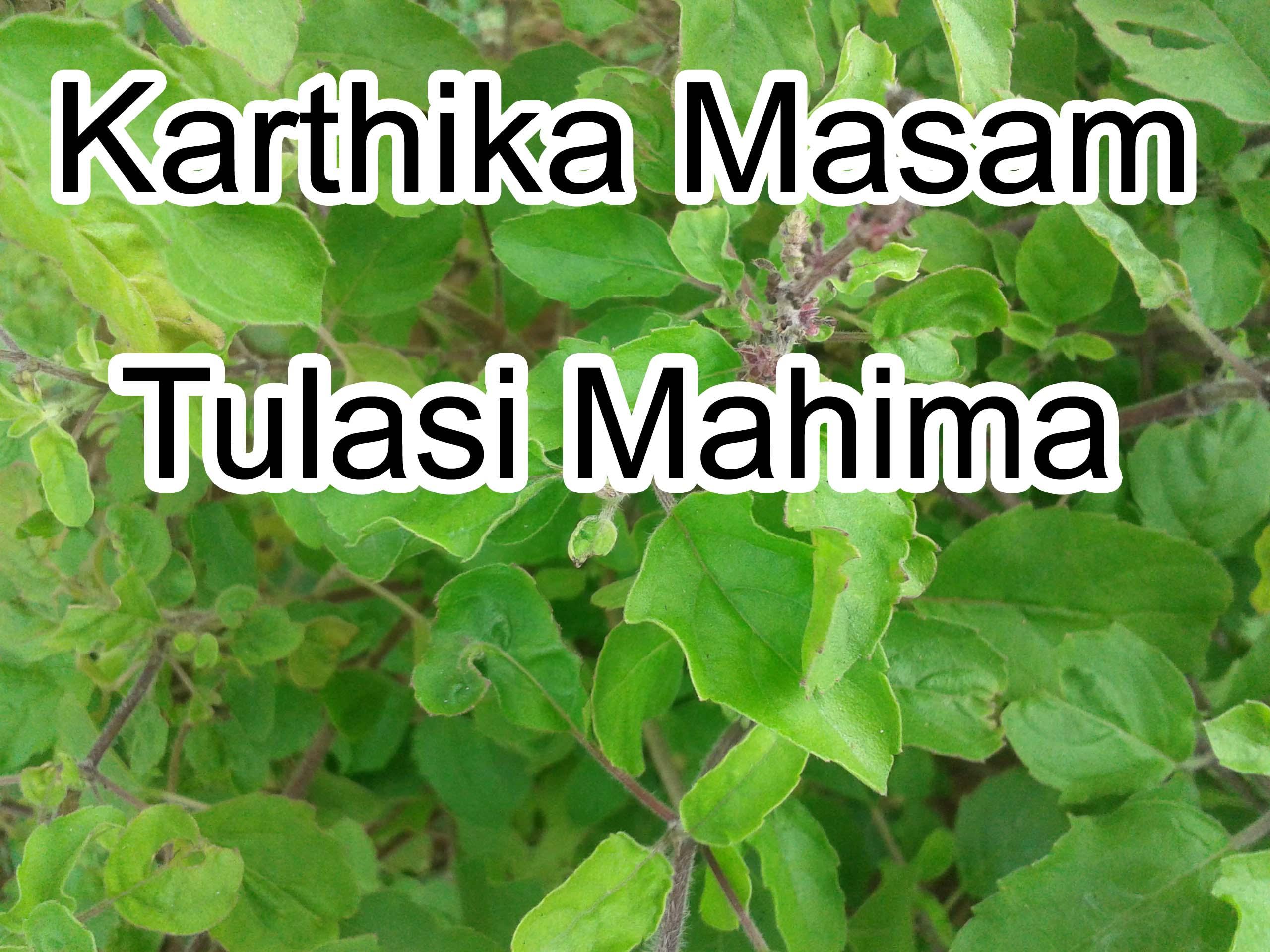 12Karthika Masam Tulasi Mahima