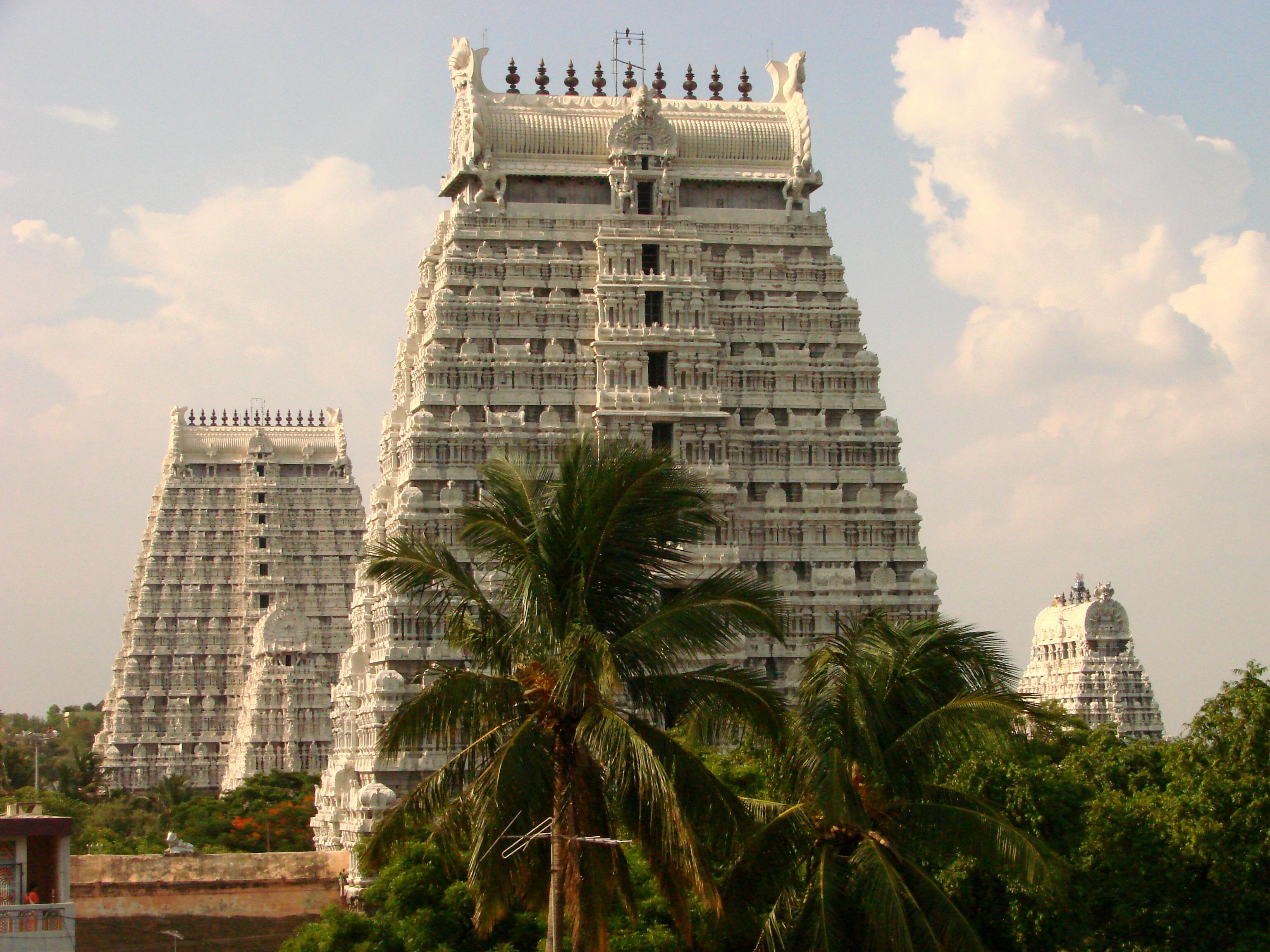 Arunchaleshvara_Temple_-_Tiruvannamalai_-_India_02