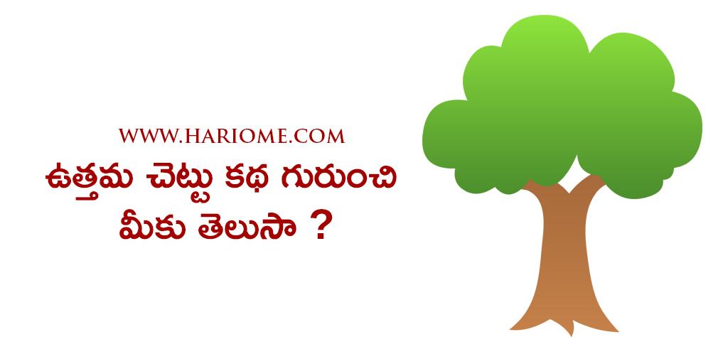tale of best tree