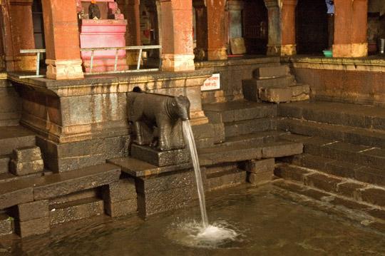 mahabaleshwar krishna river origin from cow