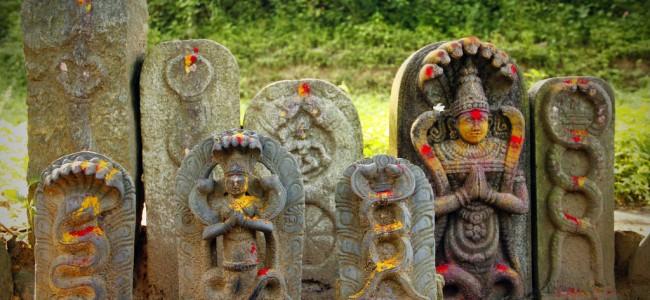 010814-ci-nag-panchami-naag-panchami-festivals-of-snakes-1-650x300