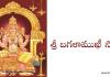 శ్రీ బగళాముఖీ స్తోత్రం – 2 - Sri Bagalamukhi Stotram – 2 in Telugu